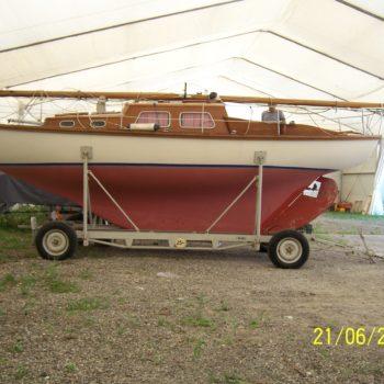Skipper (1)
